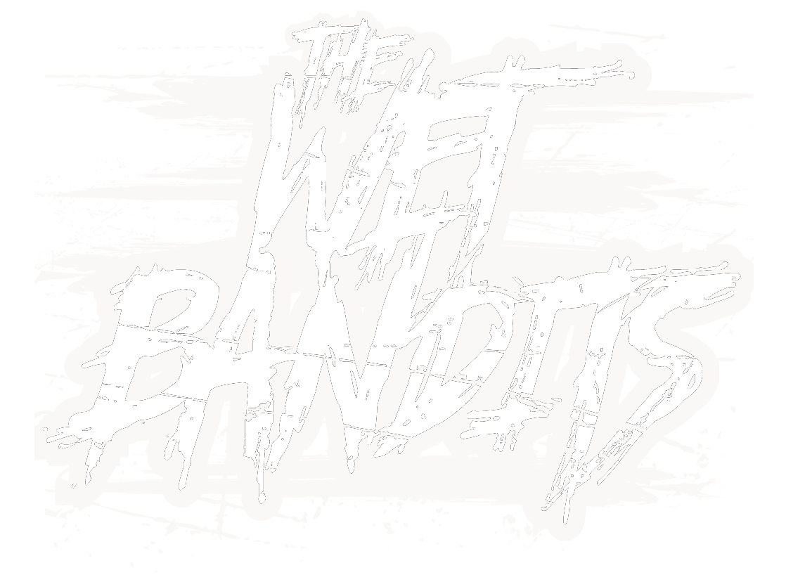 The Wet Bandits Logo